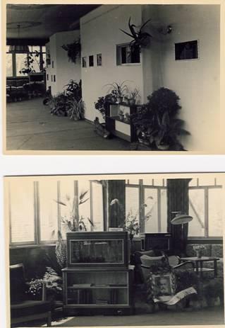Bilder der Groitzscher Ausstellung 1956